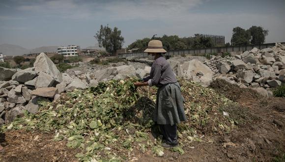 En el Congreso no hubo consenso en nueva Ley de promoción agraria y volvió a la Comisi+ón de Economía . (Foto: Anthony Niño guzmán/GEC)