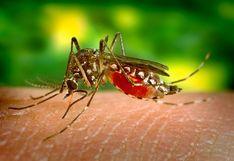 Dengue | Síntomas que produce este mal y los tratamientos para combatirlo