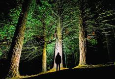 Curiosidades: 'El rey león', árboles contra el cambio climático y ratones Beethoven