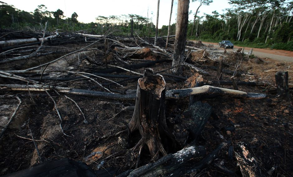 A Estados Unidos le preocupa que no haya independencia en la lucha contra la tala ilegal en el Perú. (Foto: GEC)