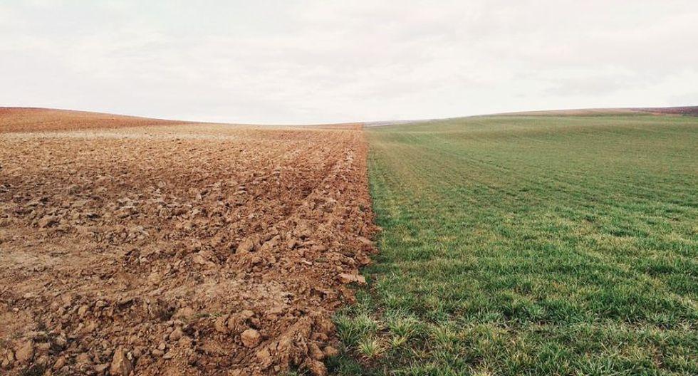 Se calcula que cada cinco segundos se erosiona una superficie de tierra equivalente a un campo de fútbol. (Foto: Pixabay)