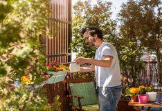 Festeja el Día Mundial del Medio Ambiente creando una zona ecoamigable en casa