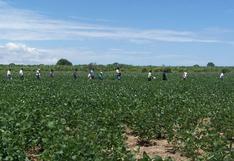 Perú, ¿país biotecnológico?, por Jaime Dupuy