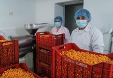 Productores peruanos exportan congelado de pulpa de aguaymanto a Suiza
