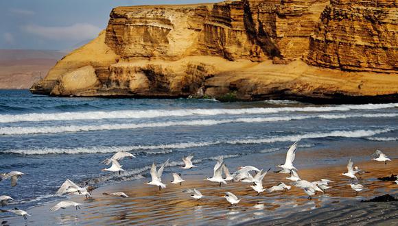 Áreas protegidas esperan recibir un millón y medio de turistas