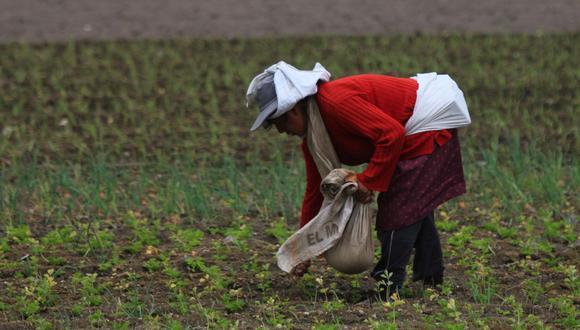 """""""Las mujeres representan alrededor de la mitad de los pequeños agricultores del mundo, contribuyendo con casi la mitad del trabajo y merecen, por tanto, más representación en el sector"""". (Foto: GEC)"""