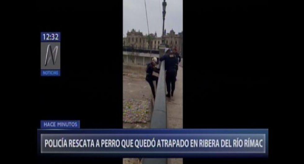 Personal de rescate de la Policía Nacional logró poner a buen recaudo al can. (Foto captura: Canal N)