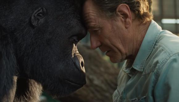 """""""The One and Only Ivan"""": una película de Disney con conciencia ecológica y a favor de los derechos de los animales, (Foto: Disney+)"""