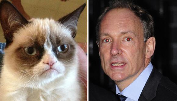 Inventor de internet no pensó que la usarían para ver gatitos