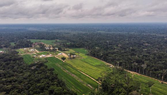 Fotografía con dron de los predios donde se ha establecido la colonia menonita en Masisea. Foto: Sebastian Castañeda.
