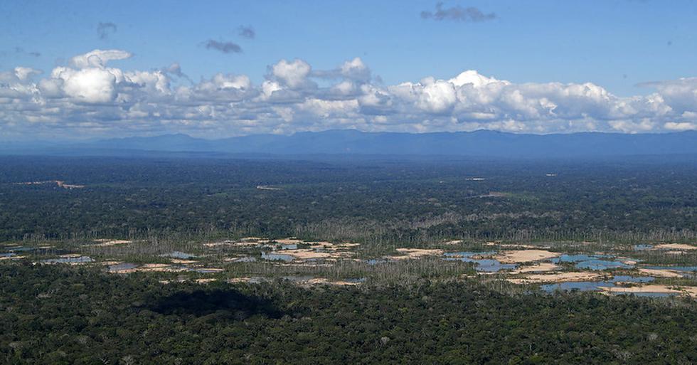 La restauración de 759 hectáreas afectadas por la minería ilegal al interior de la Reserva Nacional Tambopata, en Madre de Dios, es resultado de un trabajo conjunto entre el Ministerio del Ambiente (Minam) y otros sectores del Poder Ejecutivo, el gobierno regional y los municipios locales, además del apoyo de la cooperación internacional. (Foto: Minam)