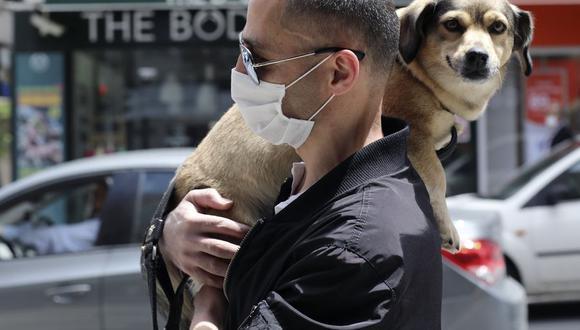 Las mascotas deben ser tomadas en cuenta en todas las etapas de prevención. (Foto: AP)