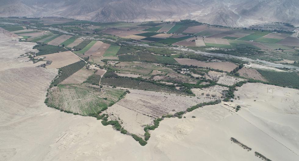 Así luce hoy la zona Caral-Chupacigarro. Al menos el 50% de su territorio está ocupado por supuestos agricultores. (Foto: Bryan Albornoz)