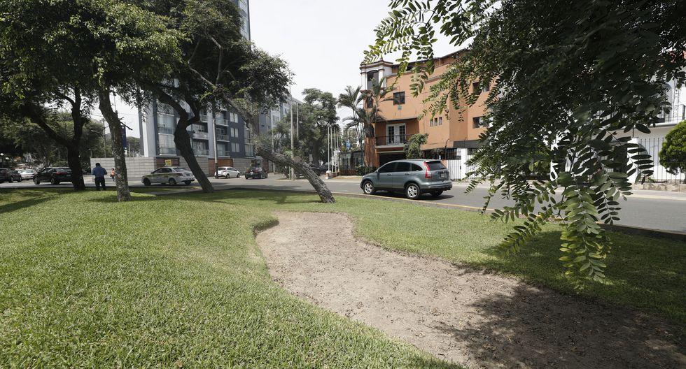 El césped de varios parques emblemáticos de Miraflores, como el Salazar o el María Reiche, está marchito. Durante tres semanas no hubo personal encargado de los jardines en el distrito (Foto: César Campos).