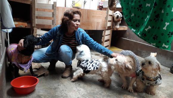 Rescatista de animales Carmen Rosa Larenas Jibaja (Foto: El Comercio/Óscar Paz)