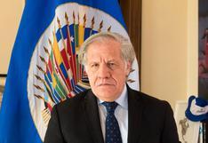 Elecciones 2021: Secretaría General de OEA confirma envío al Perú de Misión de Observación Electoral