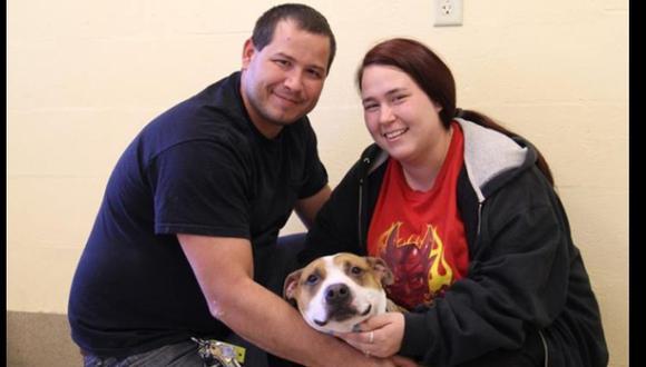 Perro perdido por el huracán Sandy fue hallado 18 meses después