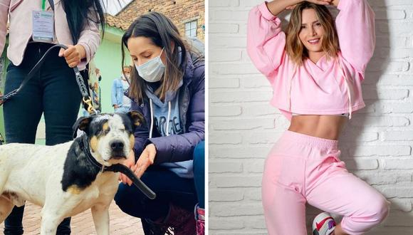 Carmen Villalobos agradeció a las personas que denuncian lo casos de maltrato animal. (Foto: Instagram / @cvillaloboss)