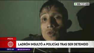 Puente Piedra: ladrón insultó a policías tras ser detenido por robar un celular