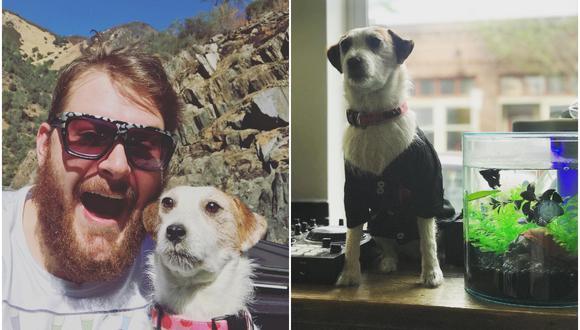 Un joven de Estados Unidos disecó a su fallecida mascota para que estuviera en todos sus viajes. (Foto: @mydeaddogandme / Instagram)
