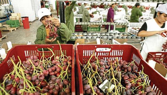Las uvas frescas fueron el principal producto con valor agregado que exportó el Perú, durante 2019. (Foto: GEC)