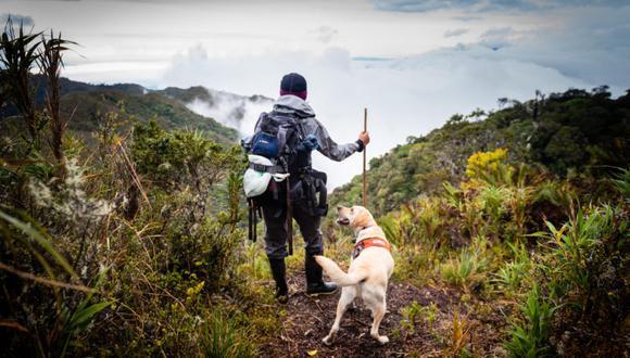 Stephanie Arroyo cuida celosamente la alimentación de Tigre. Cuando las giras son físicamente demandantes, el perro consume más proteína y, al regreso de la expedición, se le lleva a fisioterapia para evitar un desgaste en los músculos. Foto: Ian Thomson.