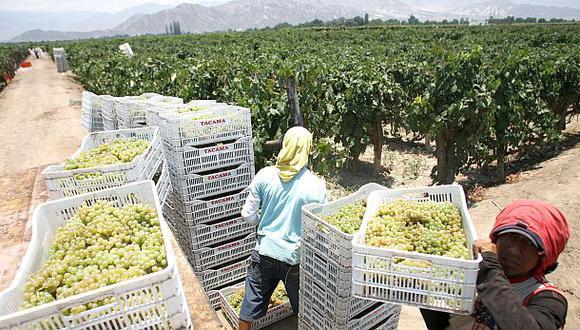 Agroexportaciones aumentaron 23% a US$4.205 millones en 2014