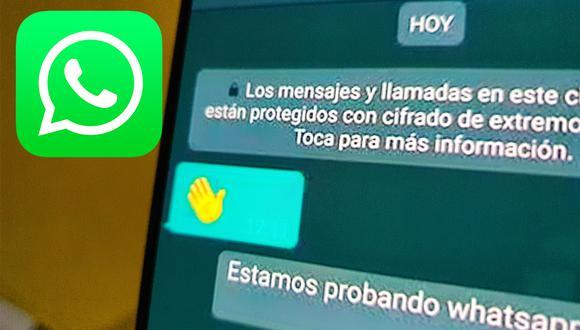 ¿Por qué no debo descargar el APK de WhatsApp Plus 13.20? Conoce los beneficios y los riesgos. (Foto: MAG)