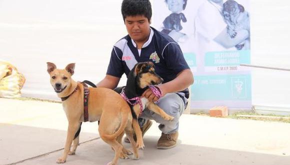 La Libertad: Trujillo tendrá su primera maratón canina