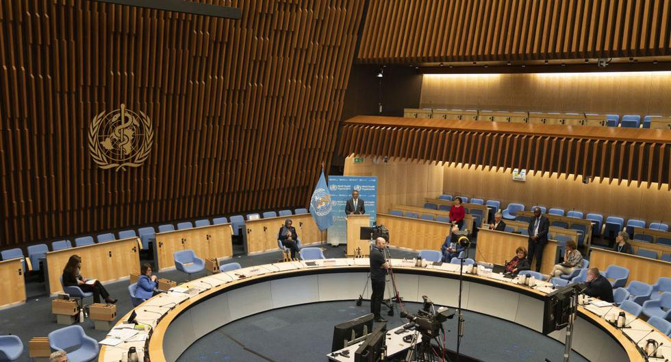 WHO annual assembly: Health priorities, beyond the pandemic
