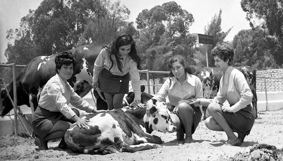 Hace 50 años abrió sus puertas la Feria Agropecuaria de La Molina. Foto: GEC Archivo Histórico