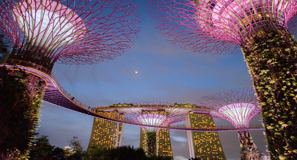 El número ocho, Singapur, cuenta con el parque Gardens by the Bay, el principal pulmón del país asiático. Dicha república presenta más de 29.000 infectados y 22 muertes. / Foto: Shutterstock.