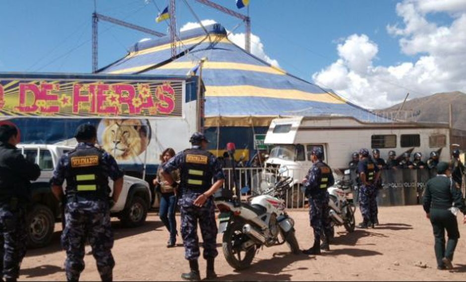 Cusco: clausuraron circo donde docente fue atacada por un león