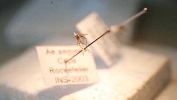 Dengue en Lambayeque: hay tres casos graves