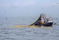 Exportación de pesca para consumo humano directo cayó 19,6% en el 2020, según ADEX