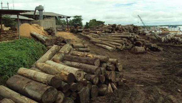 Madera valorizada en S/. 1,6 mllns. fue decomisada en Iquitos