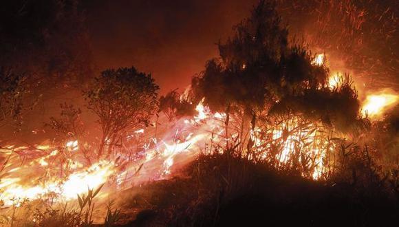 El fuego arrasó el lunes varias hectáreas de bosques del cerro Ilucán, en Cutervo (Cajamarca). En esa provincia se ubica el Parque Nacional de Cutervo, una de las seis áreas naturales protegidas dañadas. (Cutervo al D&i