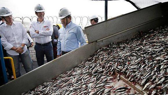 Segunda temporada de pesca de anchoveta podría retrasarse