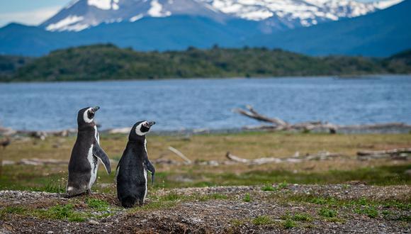 En La Patagonia te admiras con el poder de la naturaleza