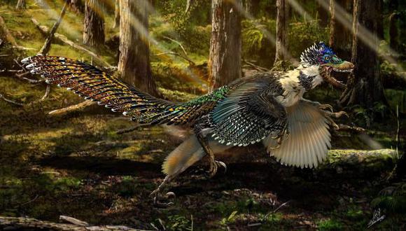 Descubren un nuevo dinosaurio emplumado