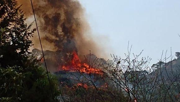 Tik Tok: El siniestro en Morelos (México) comenzó el pasado 19 de mayo. En un aproximado de tres días, el incendio afectó a 60 hectáreas. (Captura/Twitter/CEECA_Morelos).