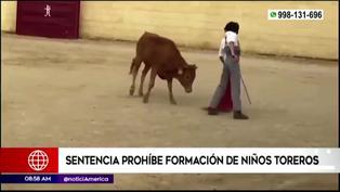 Poder Judicial prohíbe formación de niños toreros