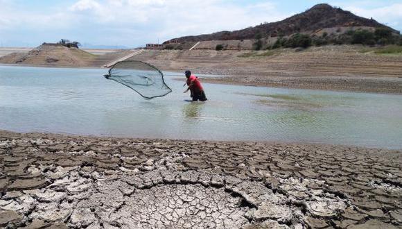 Autoridades de Agricultura evalúan daños por falta de lluvias