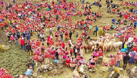 Desde 2014 se realiza el festival Queuña Raymi, una campaña anual para la producción y siembra de queuñas en las zonas altas de la Cordillera de Vilcanota, en el Cusco. Foto: Foto: Cortesía ECOAN.  ———