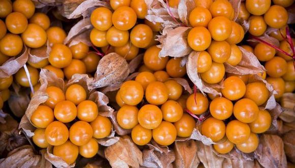 El Mincetur busca la mejora de la competitividad de frutales, productos andinos y productos hidrobiológicos. (Foto: Mincetur/Difusión)