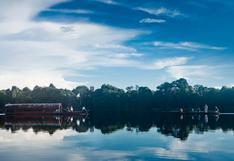 El proyecto que busca poner en valor los bosques amazónicos y que impulsa la embajada del Reino Unido