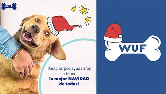Sin Envolturas y Culqui donarán su comisión para que el 100% de su ganancia sea entregada a los perros.