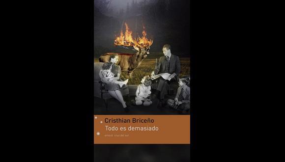 """""""Todo es demasiado"""" de Cristhian Briceño. (Foto: Difusión)"""