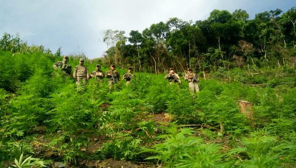 La intervención fue un procedimiento conjunto entre el Comando Vraem, la Policía Nacional y el Ministerio Público. (Foto: CC.FF.AA.)