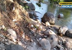 Advierten peligros por la contaminación en ríos de la selva de San Martín